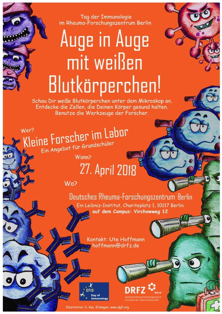 Poster zur Veranstaltung am Deutschen Rheuma Forschungszentrum zum Tag der Immunologie. © J. Hirscher
